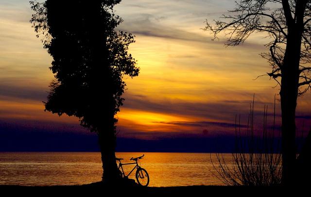 Fahrrad am See - aber nicht mein Centurion Cross Line 600