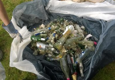 Glasscherben vom Bodenseeufer bei Friedrichshafen. Eingesammelt während des Sea Shepherd Beach Cleanup am Bodensee