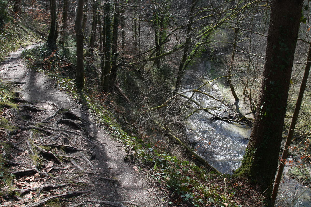 Wanderweg durch den Aachtobel