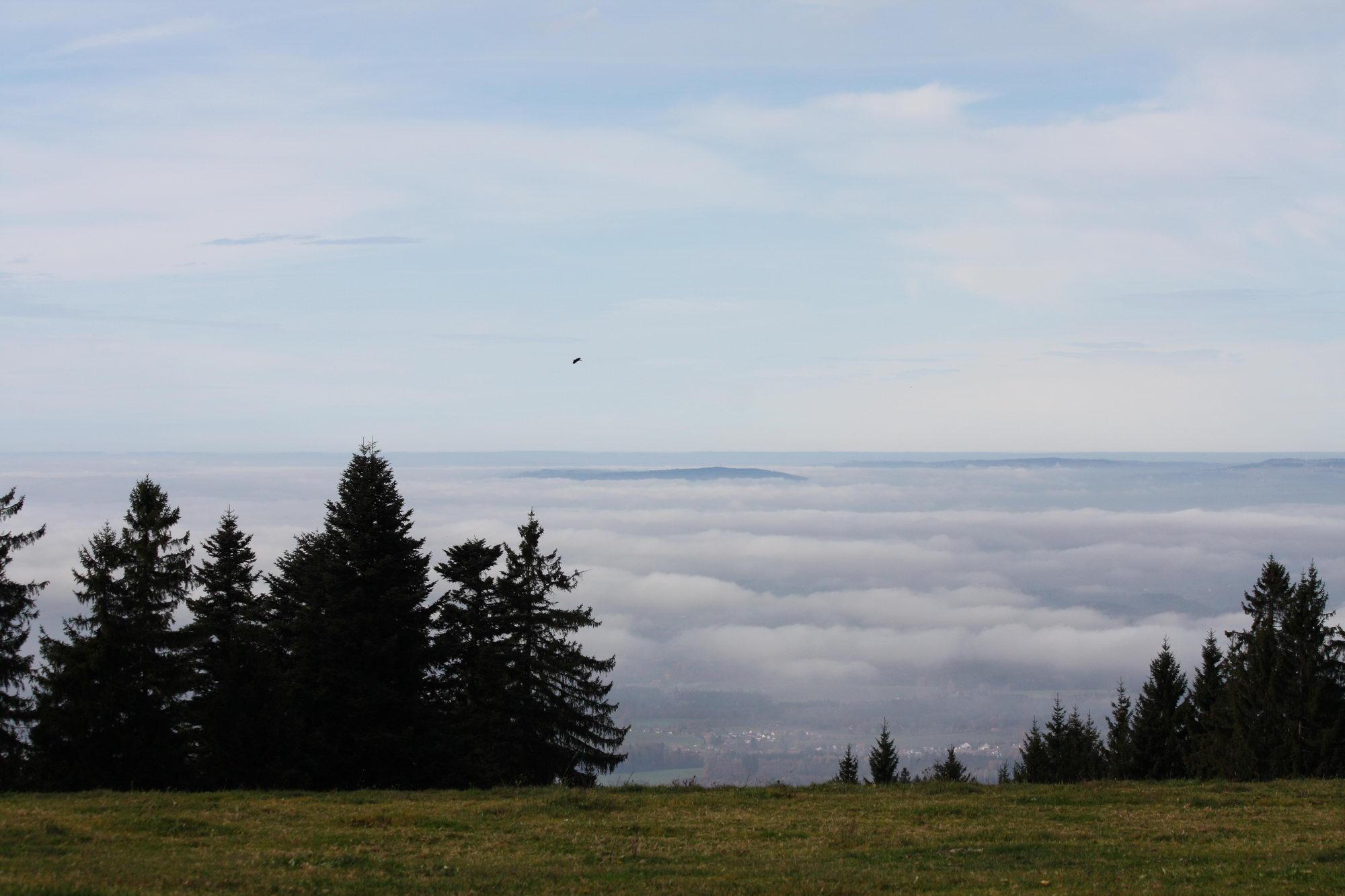Der Blick vom Hochberg ins Tal