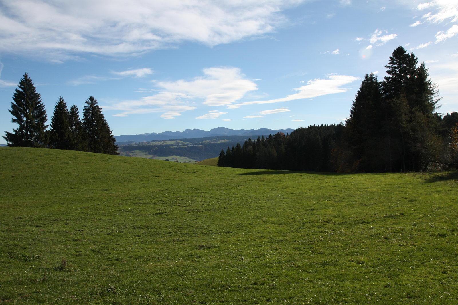 Auf dem Weg in Richtung Skywalk Allgäu - Blick zum Hochgrat