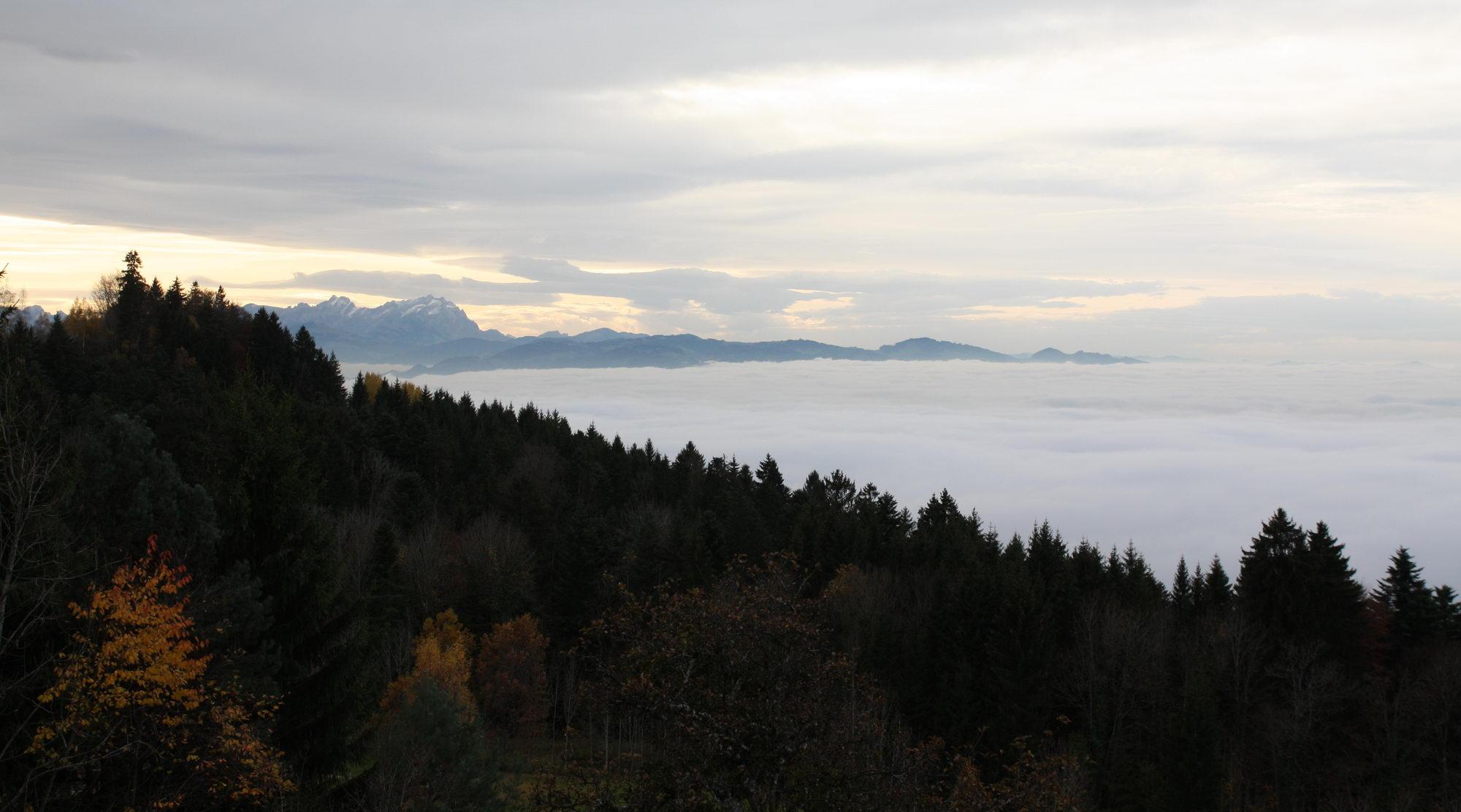 Vernebelter Bodensee vom Hochberg aus gesehen.
