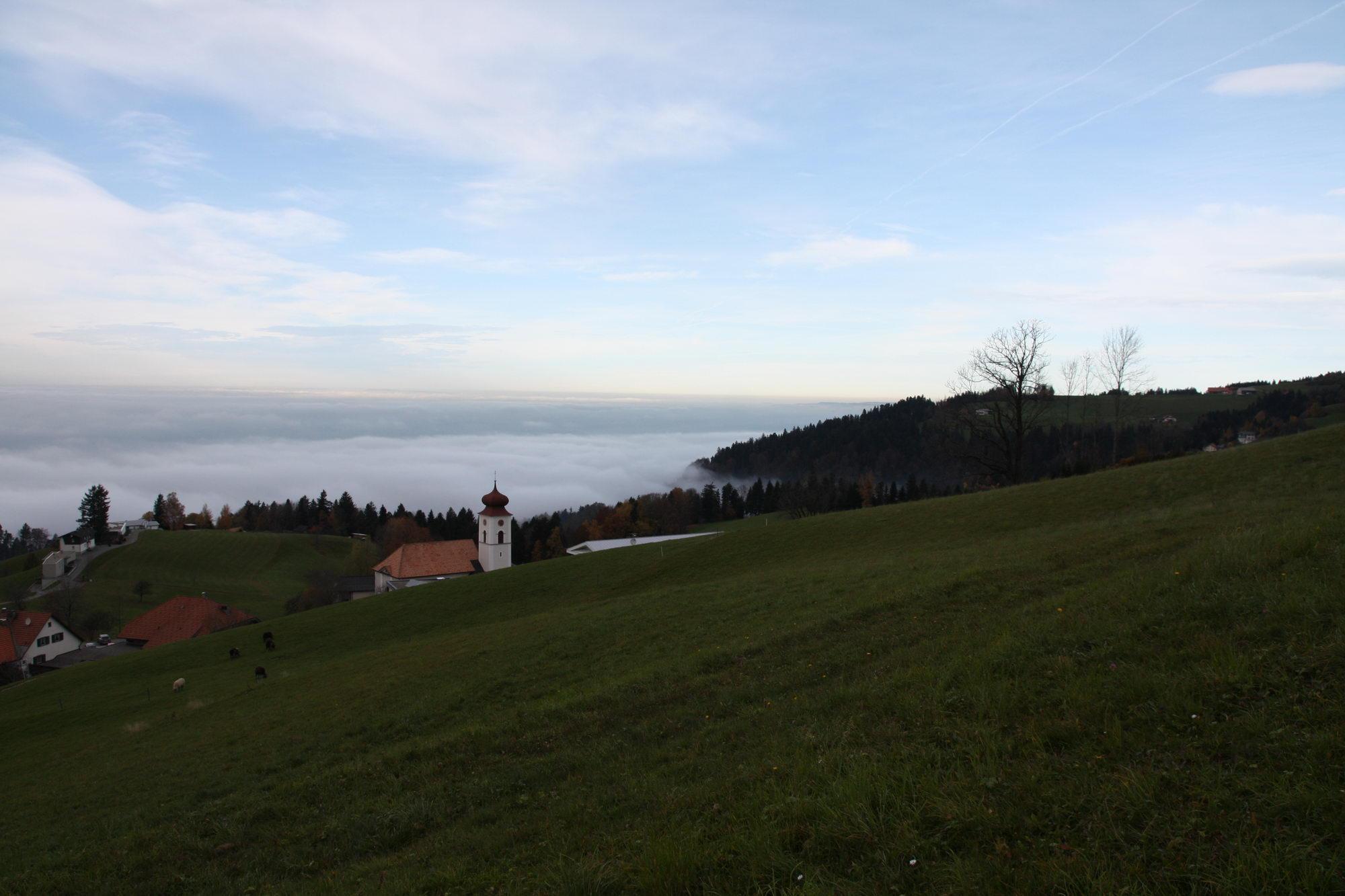 Eichenberg - der Wanderweg kommt oberhalb des Orts aus dem Wald und bietet ein wunderbares Panorama
