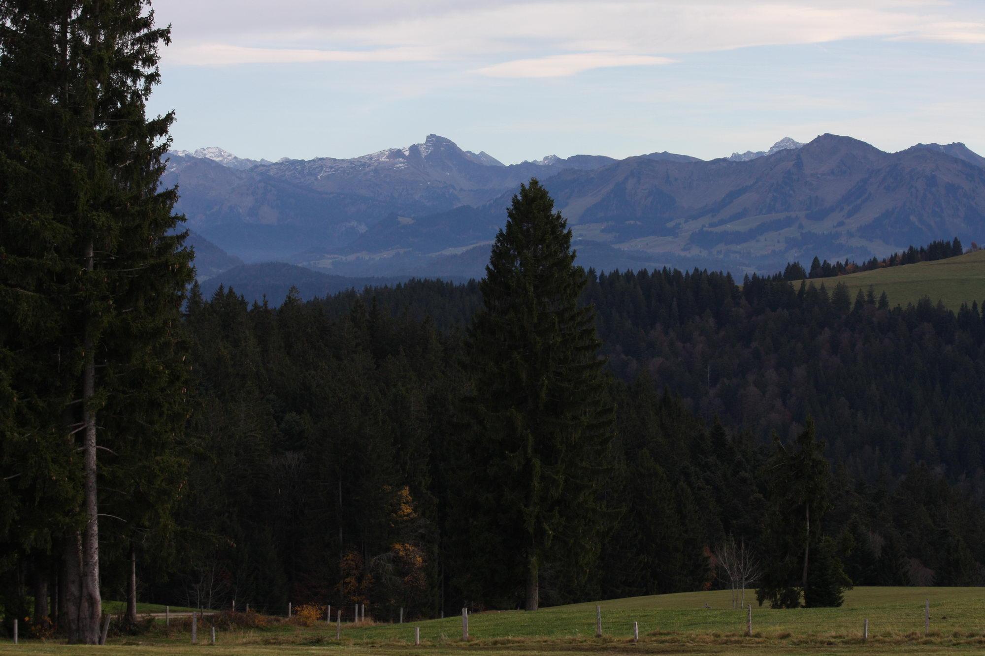 Blick über die Wiesen am Hochberg
