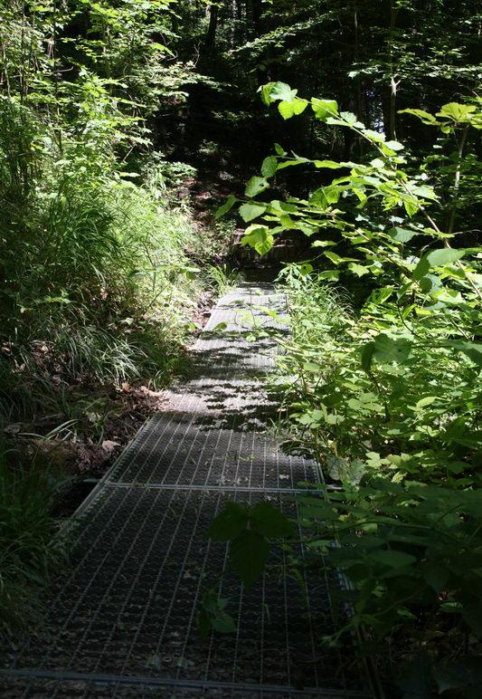 Gitterrost-Weg im Hödinger Tobel
