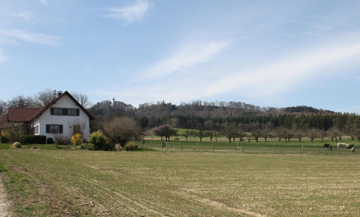 Lippertsreute-Steinhöfe mit Blick Richtung Mehlsack