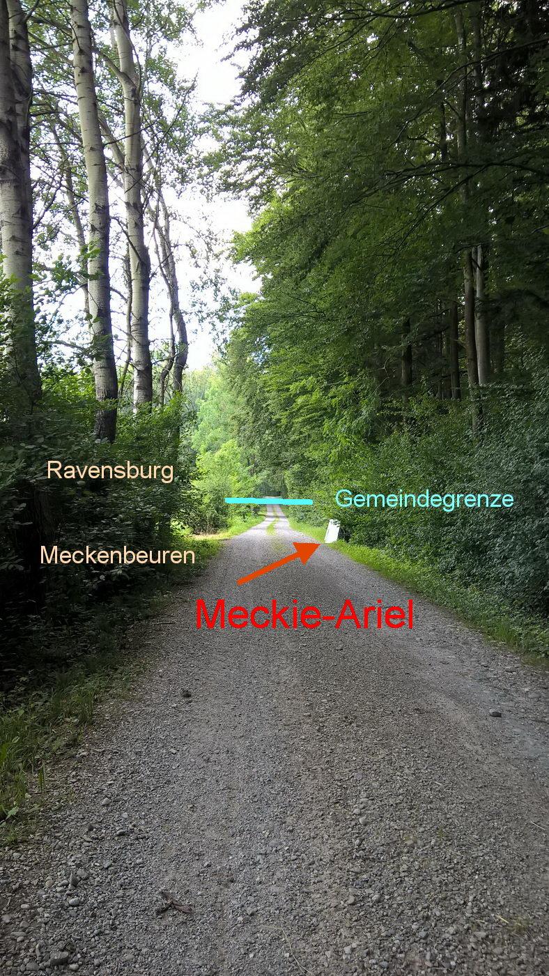 Der Meckie-Ariel-Weg in der Wildnis des Bodensee-Hinterlands. Eingetragen die Gemeindegrenze zwischen Ravensburg und Meckenbeuren. Wegen fehlender ca. 100m hat Ravensburg den Kampf um Meckie-Ariel nur knapp verloren.