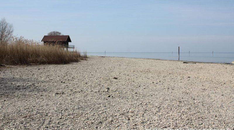 Gleich hinter dem bregenzer Yachthafen gehts direkt am Wasser entlang durch das Naturschutzgebiet Mehrerauer Ufer.