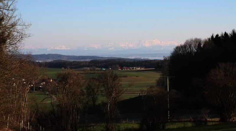 Blick auf den Bodensee und Säntis unterhalb von Hohenbodman